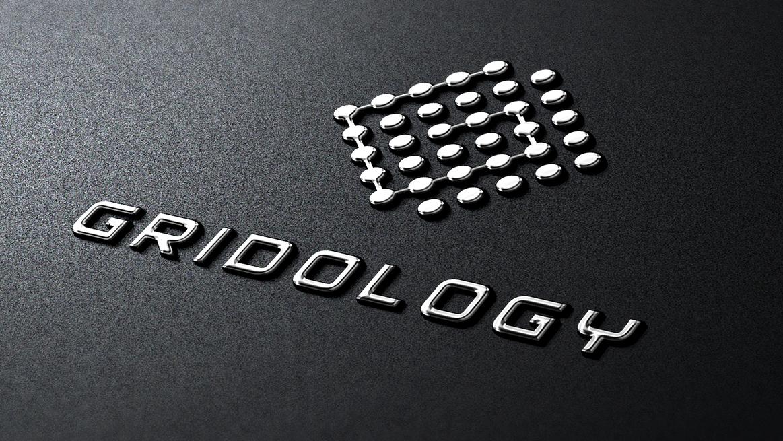 gridology_3
